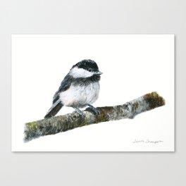 Black-capped Chickadee by Teresa Thompson Canvas Print