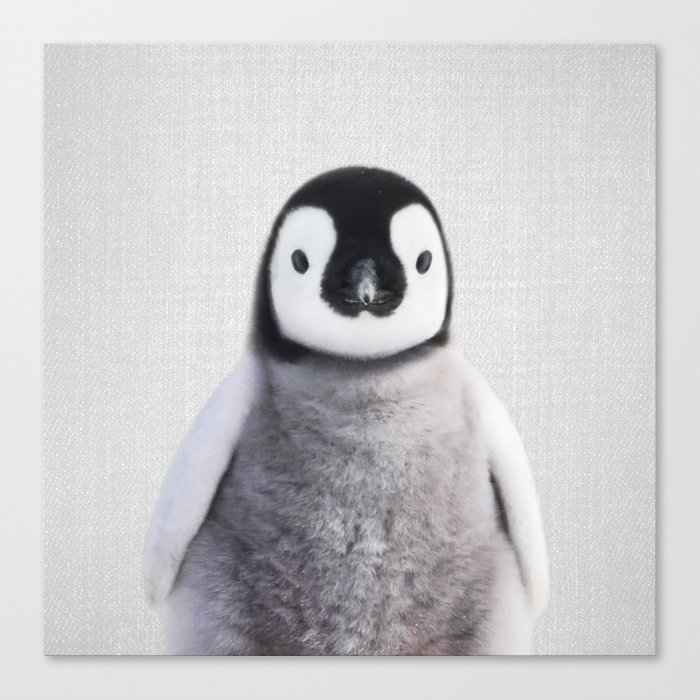 Baby Penguin - Colorful Canvas Print