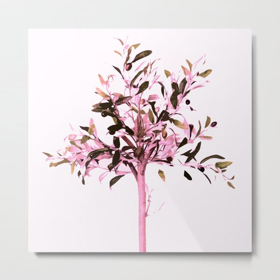 Little olive tree with pink tones on a white background Metal Print