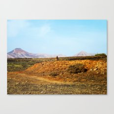 Stones and Mountains Canvas Print