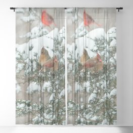 After the Snow Storm: Three Cardinals Sheer Curtain