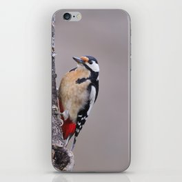 Great spotted woodpecker iPhone Skin