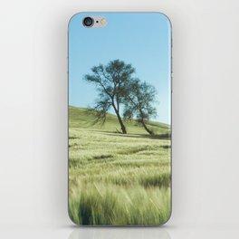 Lone Tree Photography Print iPhone Skin