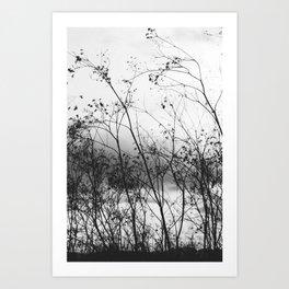 In the Breeze Art Print