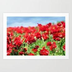 Scarlet Field Art Print