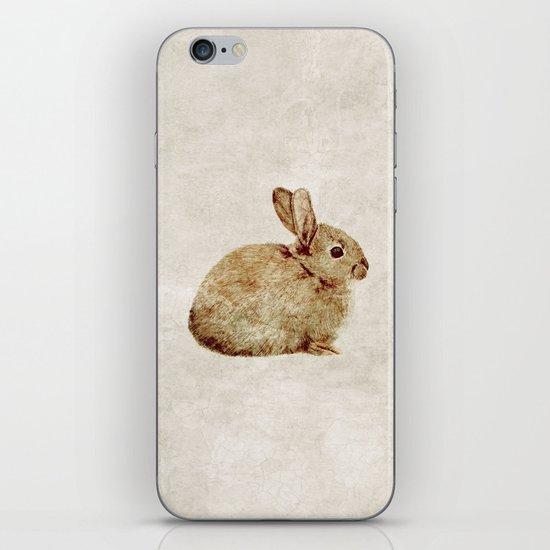 Vintage Rabbit Study in Watercolour iPhone & iPod Skin