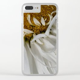 Shasta daisy two Clear iPhone Case