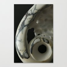 Innervision Canvas Print