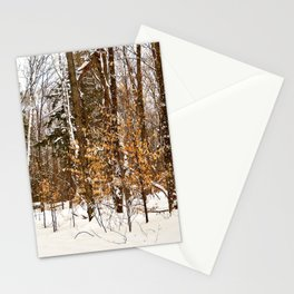 Maple Beech Forest in the Winter Stationery Cards