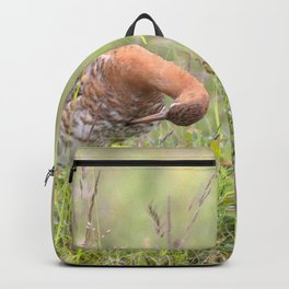Watercolor Bird, Godwit 02, Akureyri, Iceland Backpack