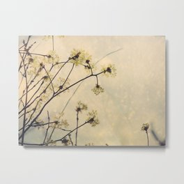 Spring Branches in White Botanical Metal Print