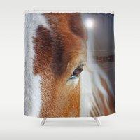 horses Shower Curtains featuring horses  by mark ashkenazi