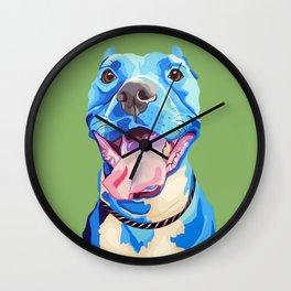 Ziggy the Pit Bull Terrier Wall Clock
