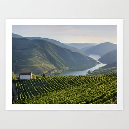 Vineyards and a chapel in the Douro Valley, Portugal Art Print