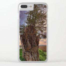 Stump Clear iPhone Case
