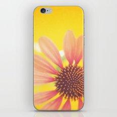 Pink Sunshine iPhone & iPod Skin