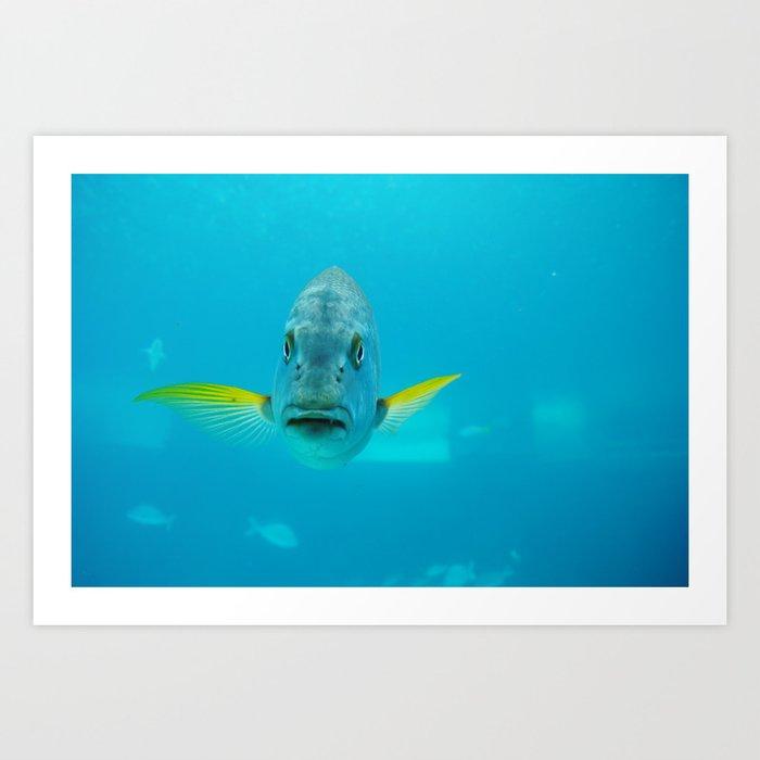 Hello Fish Art Print
