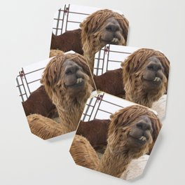 Fluffy Grin Coaster