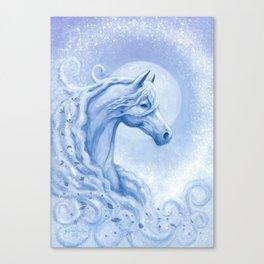 WindCruiser Canvas Print
