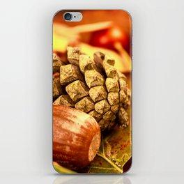 Arbores autumnales effectu iPhone Skin