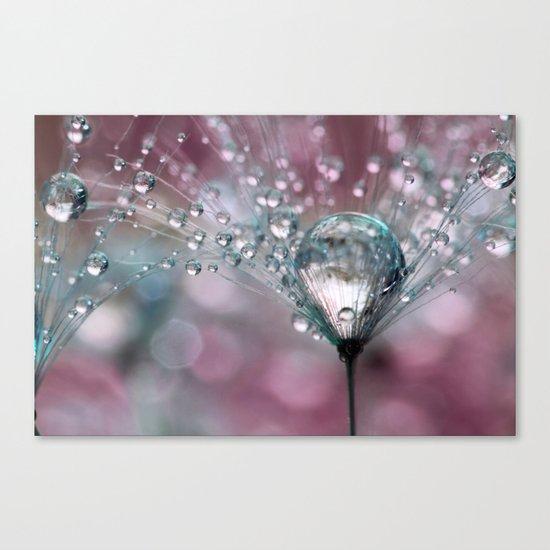 Rasberry Sparkles Canvas Print