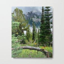 Mountain Summer Metal Print