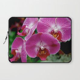 Orchids No.1 Laptop Sleeve