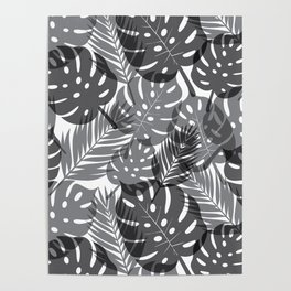 Tropical Shadows - White / Black Poster