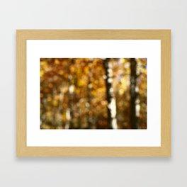 Autumn Aspens by Boone Speed Framed Art Print