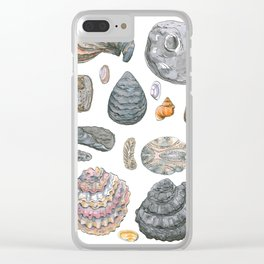 Normandy's shells Clear iPhone Case