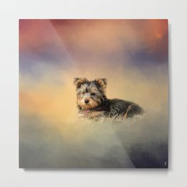 Loving the Leaves - Yorkshire Terrier Puppy Metal Print