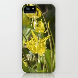 Glacier Lily Painterly iPhone Case