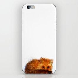 Shy Red Fox iPhone Skin