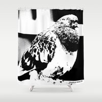 pigeon Shower Curtains featuring Pigeon by Manford Holmes