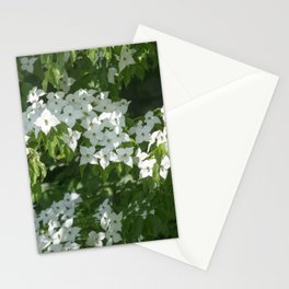 Longwood Gardens - Spring Series 244 Stationery Cards