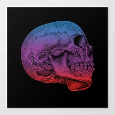 Rainbow Skull Joy Canvas Print