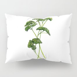 A Bunch of Parsley Pillow Sham