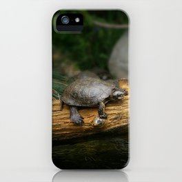 Turtle on a Log iPhone Case