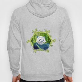 abstract panda Hoody