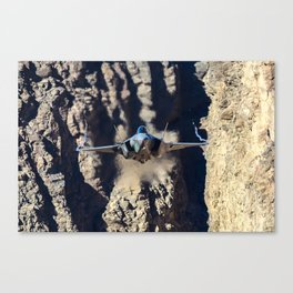 F-35 in Death Valley Canvas Print