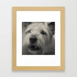 Howly Scout Framed Art Print
