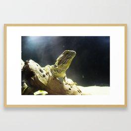 Majesty Framed Art Print