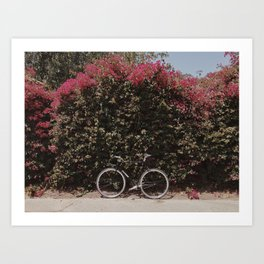 Fixie Flowers Art Print
