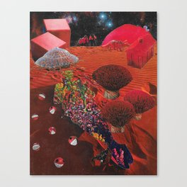 Lay Me to Rest on the Red Planet Canvas Print
