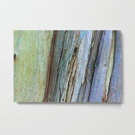 Colorful Eucalyptus Bark Metal Print