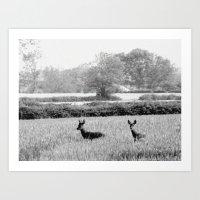 Bambi Art Print