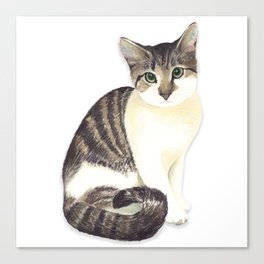 Charming the fat cat that likes to eat a lot Canvas Print