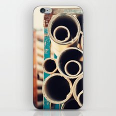 Roly Poly iPhone & iPod Skin