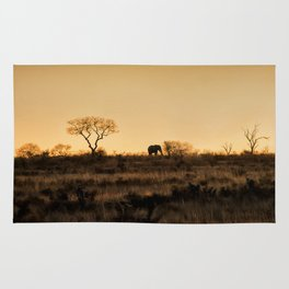 Elephant Sunset Silhouette Rug