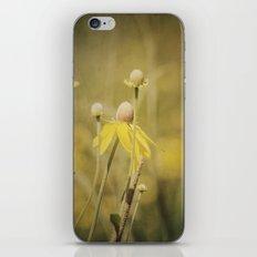 Wild Yellow iPhone & iPod Skin